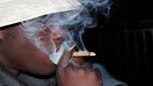 cannabis_fumer