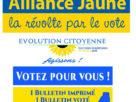 Affiches des listes de Gilets Jaunes pour les élections européennes de 2019