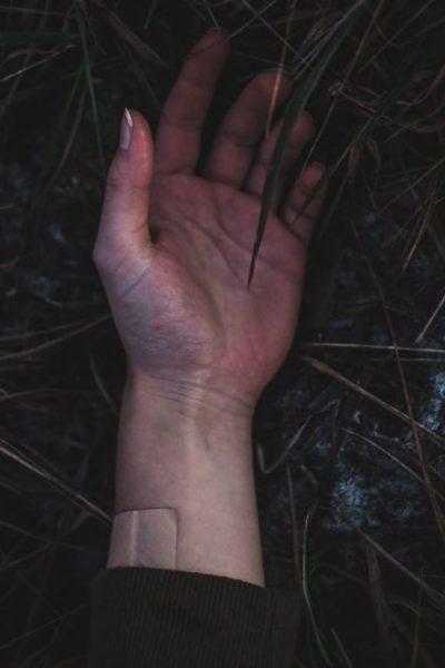 Une main humaine dans des herbes